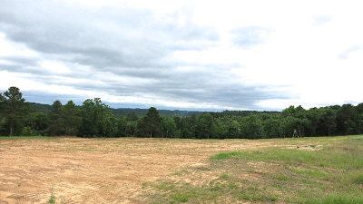 Anderson County Residential Lots & Land For Sale: 00 An Co Road 450
