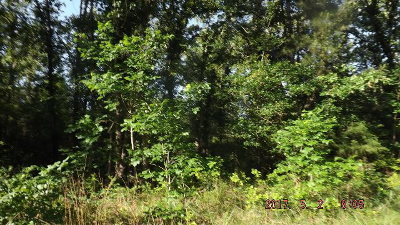 Anderson County Residential Lots & Land For Sale: W State Highway 294