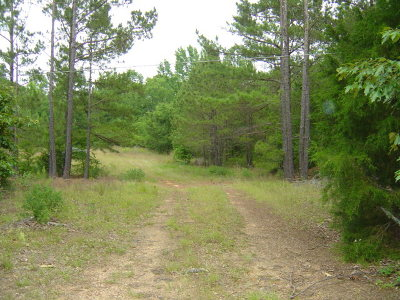 Residential Lots & Land For Sale: 315 Hwy 155