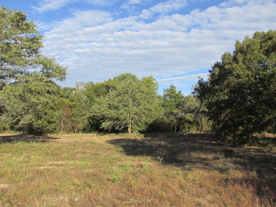 Anderson County Residential Lots & Land For Sale: 160/166 Private Road 8324