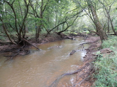 Anderson County Residential Lots & Land For Sale: 1226