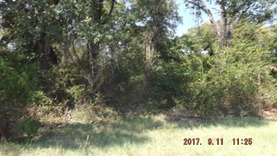 Palestine TX Residential Lots & Land For Sale: $68,811