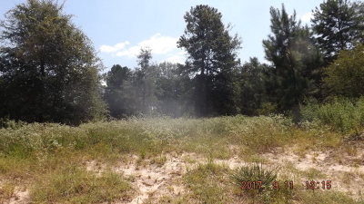 Anderson County Residential Lots & Land For Sale: Fm 1817