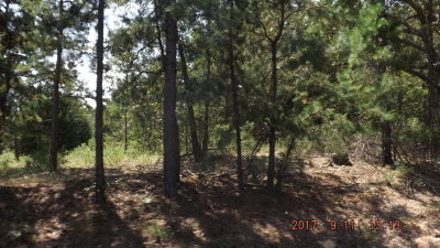 Elkhart TX Residential Lots & Land For Sale: $49,727