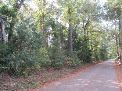 Anderson County Residential Lots & Land For Sale: 00 Acr 436