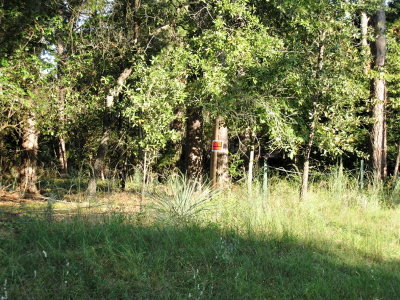 Anderson County Residential Lots & Land For Sale: Lot 102 Acr 325
