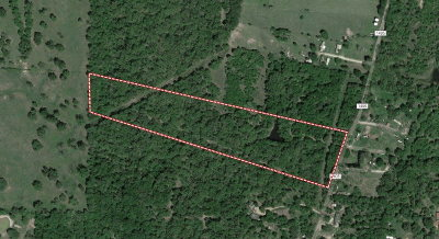 Residential Lots & Land For Sale: 00 County Road 1405