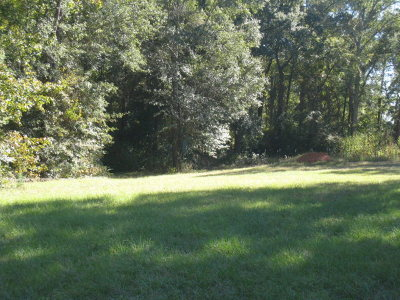 Anderson County Residential Lots & Land For Sale: 00 Pecan Street