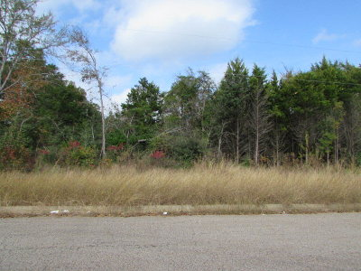 Anderson County Residential Lots & Land For Sale: Murchison