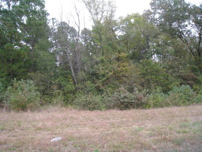 Residential Lots & Land For Sale: 00 Hwy 155