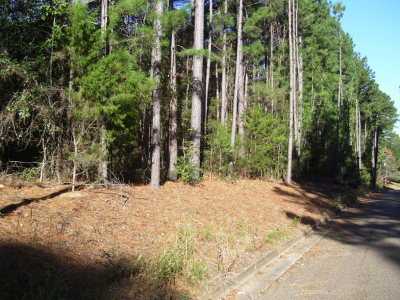 Anderson County Residential Lots & Land For Sale: Pine Tree Dr