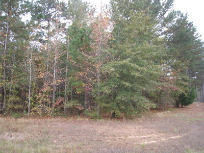 Henderson County Residential Lots & Land For Sale: Lot 1 Nathan Drive