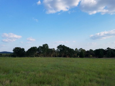 Residential Lots & Land For Sale: 000 An County Road 421