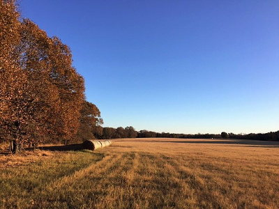Henderson County Residential Lots & Land For Sale: Fm 1861