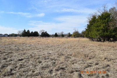 Anderson County Residential Lots & Land For Sale: 00 An County Road 164