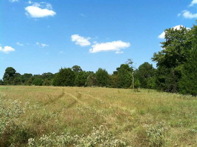 Anderson County Residential Lots & Land For Sale: 1934 W Us Hwy 175