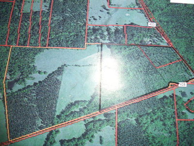 Anderson County Residential Lots & Land For Sale: An Co Rd 408