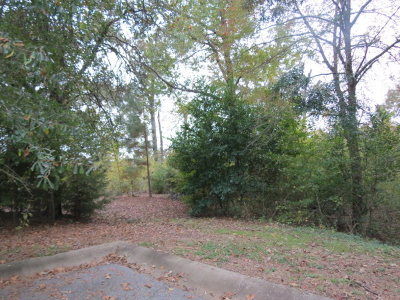 Residential Lots & Land For Sale: 22048 Pebble Beach Cir