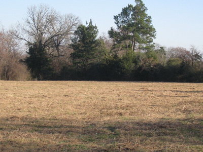 Anderson County Residential Lots & Land For Sale: 1282 Acr 327