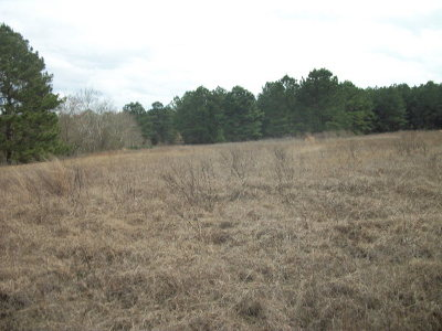Anderson County Residential Lots & Land For Sale: 000 An County Road 2134