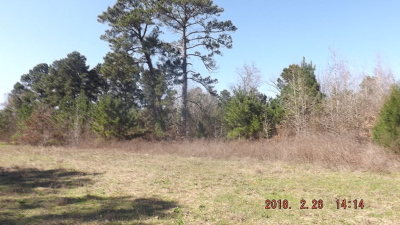 Anderson County Residential Lots & Land For Sale: State Highway 294