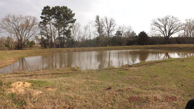 Anderson County Residential Lots & Land For Sale: Fm 1990