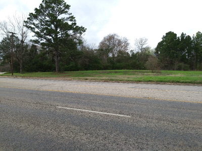 Residential Lots & Land For Sale: 1501 State Highway 155