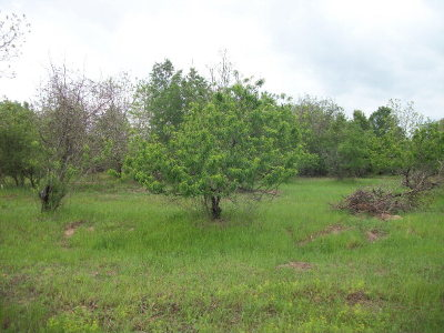 Residential Lots & Land For Sale: W Acr 2608