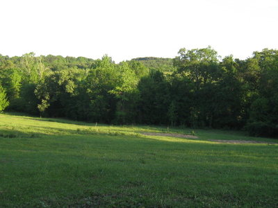 Anderson County Residential Lots & Land For Sale: 000 E Fm 837