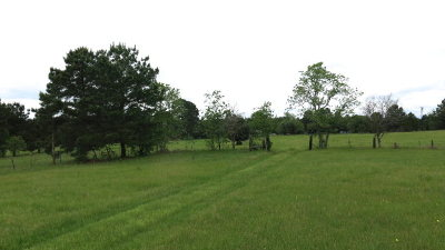 Anderson County Residential Lots & Land For Sale: 0000 An County Road 450