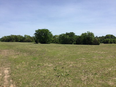 Henderson County Residential Lots & Land For Sale: 12760 Fm 2613