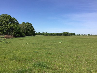 Henderson County Residential Lots & Land For Sale: 32184 Fm 85