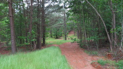 Residential Lots & Land For Sale: 0000 An County Road 450