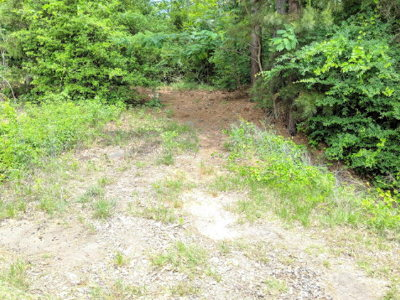 Anderson County Residential Lots & Land For Sale: 000 S Fm 2022