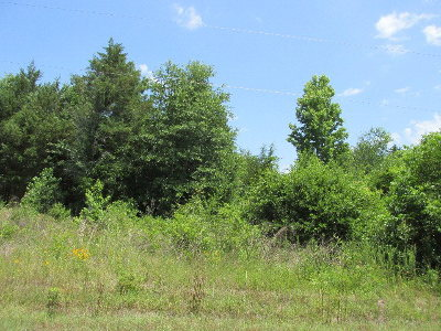 Anderson County Residential Lots & Land For Sale: Lot 6r Murchison