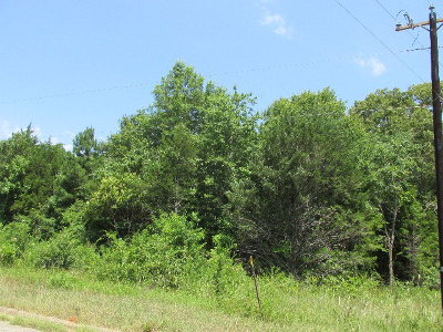 Anderson County Residential Lots & Land For Sale: Lot 8 Murchison