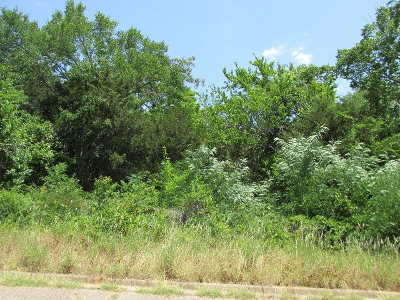 Anderson County Residential Lots & Land For Sale: Lot 9 Murchison