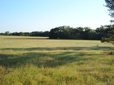 Anderson County Residential Lots & Land For Sale: 8312 S Us Hwy79