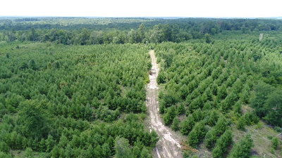 Anderson County Residential Lots & Land For Sale: 000 An County Road 3914