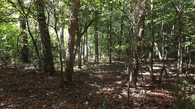 Palestine TX Residential Lots & Land For Sale: $21,500