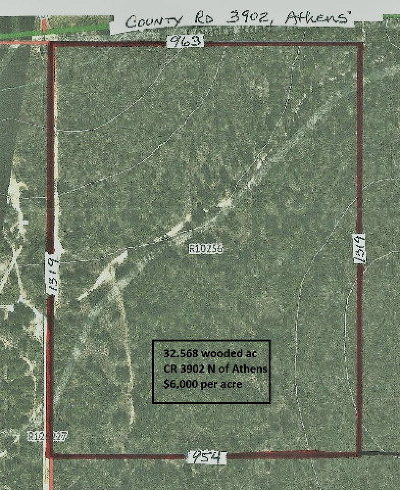 Henderson County Residential Lots & Land For Sale: 6399 County Road 3902