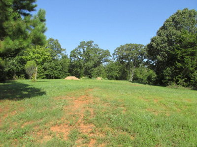 Anderson County Residential Lots & Land For Sale: 4r Murchison St.