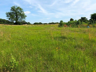 Residential Lots & Land For Sale: County Road 463