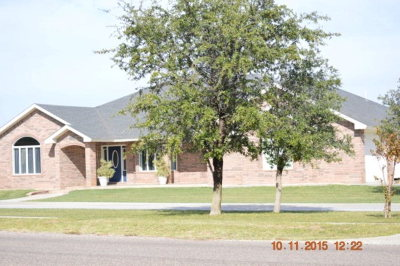 Seminole TX Single Family Home For Sale: $399,999