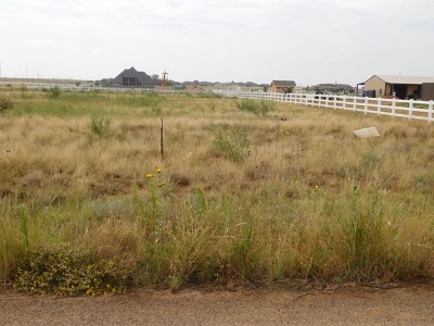Midland TX Residential Lots & Land For Sale: $99,900