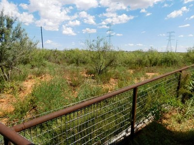 Midland Residential Lots & Land For Sale: 9708 Fm 307