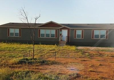 Midland Single Family Home For Sale: 7300 E County Rd 61