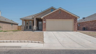 Odessa TX Single Family Home For Sale: $199,000