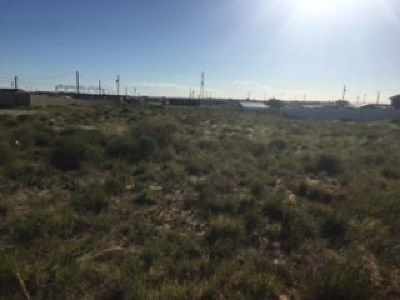 Odessa Residential Lots & Land For Sale: 956 Coychic Ave
