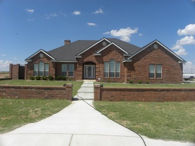 Midland Single Family Home For Sale: 3701 County Rd 160